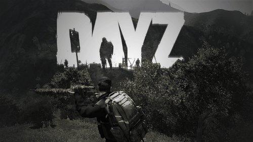 DayZ: Standalone Game Server Rental